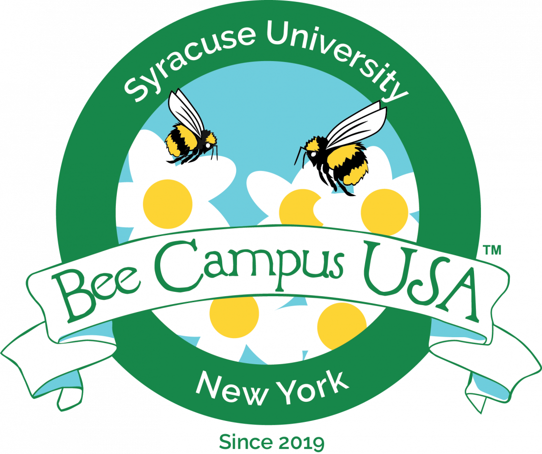 Bee Campus USA Affiliate - Syracuse University logo. Illustrated bees hover over illustrated white flowers inside a green circle with a banner that says