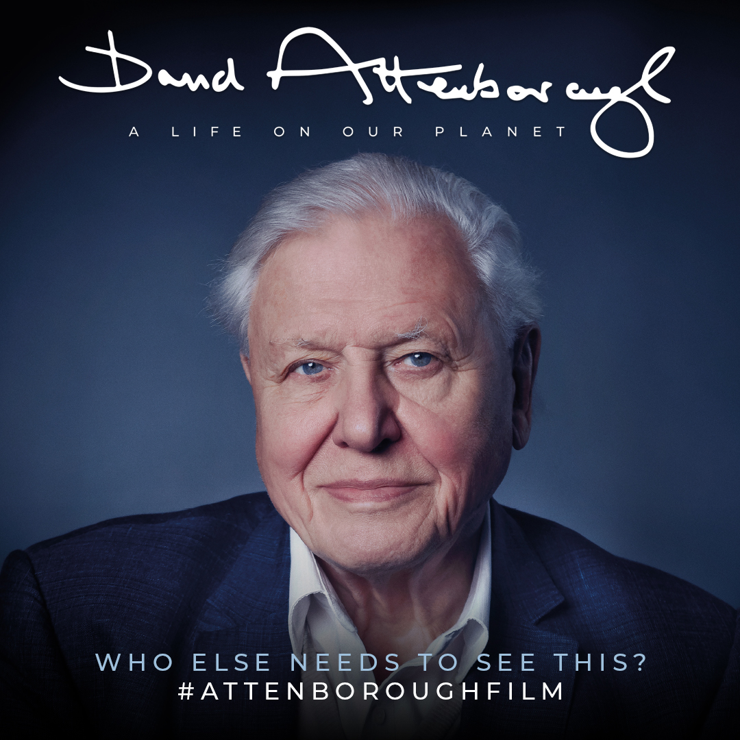 headshot of smiling David Attenborough