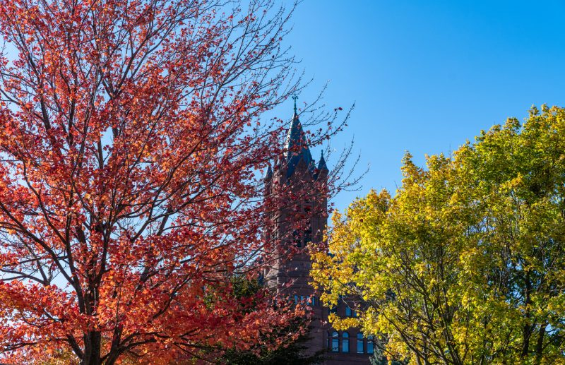 Photo of Syracuse University Campus in the Fall. The photo is from a rooftop or from the ground showing campus building and grounds in peak Central New York fall colors. This is a photo of teh Crouse College bell tower through fall colored trees.