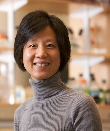 A color close-up photo of Dr. Yingxi Lin smiling for the camera