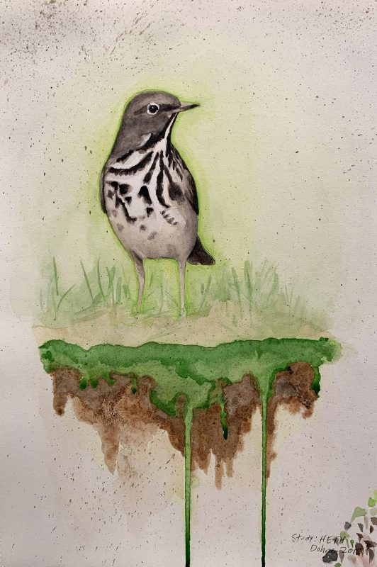 sketch of a shore bird