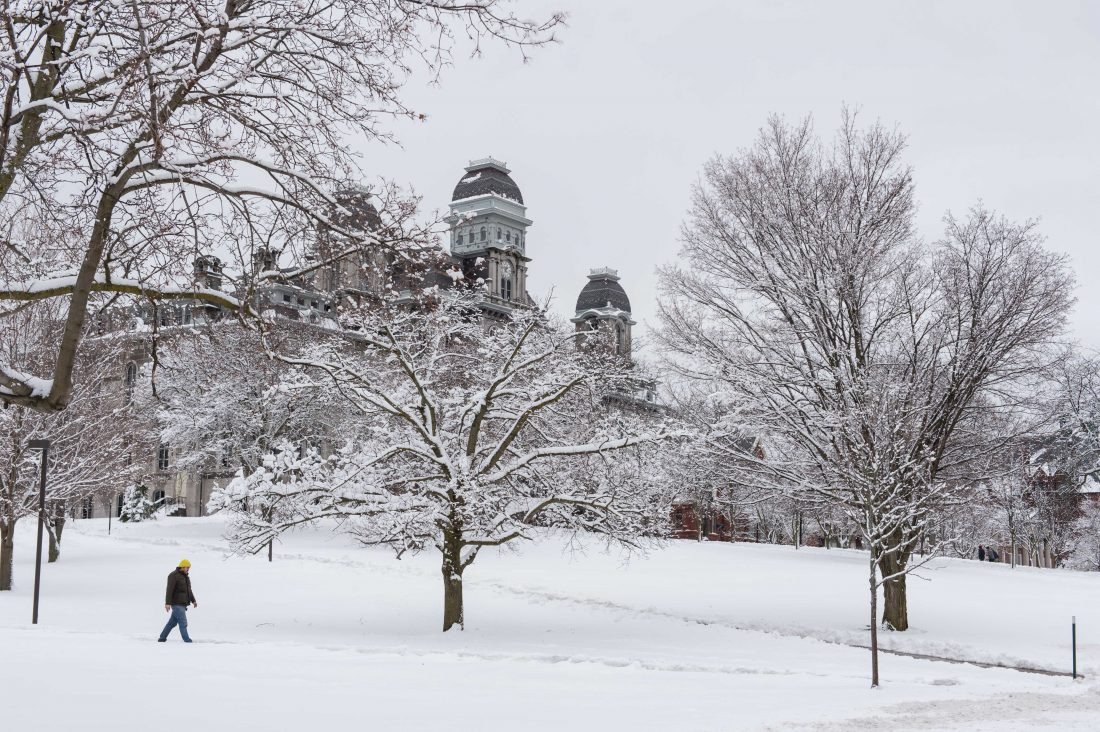 Hall of Languages in the snow