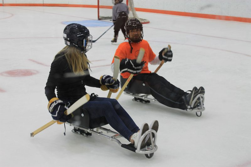 Two students skating in adaptive hockey sleds.